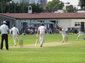 CCC Cricket Report 2021 Season